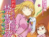 Souyaku Toaru Majutsu no Index Light Novel Volume 02