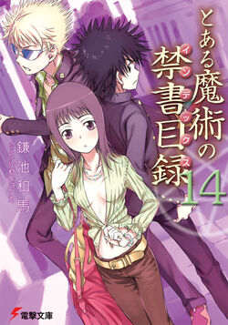 Toaru Majutsu no Index Light Novel v14 cover