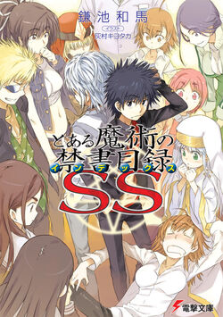 Toaru Majutsu no Index Light Novel vSS cover