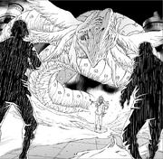 Kimi - Dragon