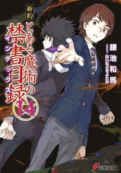 Shinyaku Toaru Majutsu no Index Light Novel v14 cover