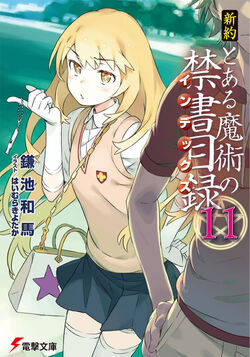 Shinyaku Toaru Majutsu no Index Light Novel v11 cover