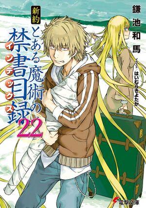 Shinyaku Toaru Majutsu no Index Light Novel v22 cover
