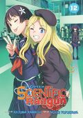 A Certain Scientific Railgun Manga v12 cover