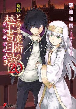 Shinyaku Toaru Majutsu no Index Light Novel v20 cover
