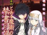 Shinyaku Toaru Majutsu no Index Light Novel Volume 20