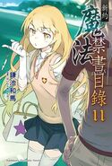 Shinyaku Toaru Majutsu no Index Light Novel v11 Chinese cover