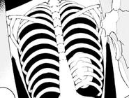 Himegi Matsuri's Chest (X-ray)
