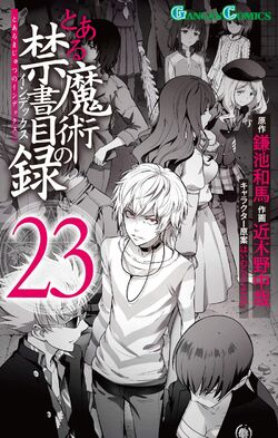 Toaru Majutsu no Index Manga v23 cover