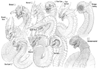 Dragon Designs 1-10 (Fuyukawa)