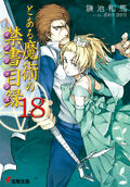 Toaru Majutsu no Index Light Novel v18 cover