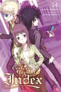 A Certain Magical Index Light Novel v14 cover