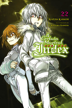 A Certain Magical Index Light Novel v22 cover