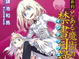 Shinyaku Toaru Majutsu no Index Light Novel Volume 02