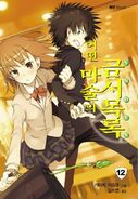 Toaru Majutsu no Index Light Novel v12 Korean cover