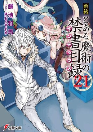 Shinyaku Toaru Majutsu no Index Light Novel v21 cover