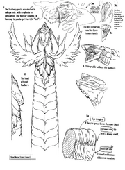 Dragon Designs 14 (Fuyukawa)
