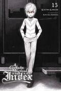A Certain Magical Index Light Novel v15 cover