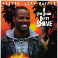 Low Down Dirty Shame A 1994 Movie And Tv Wiki Fandom