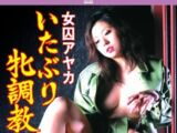 Female Prisoner Ayaka: Tormenting and Breaking in a Bitch (2008)
