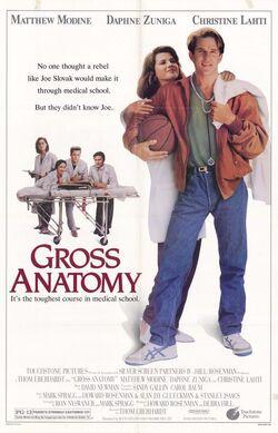 Gross Anatomy