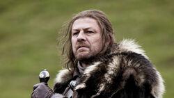 Eddard Stark1