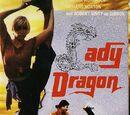 Lady Dragon (1992)