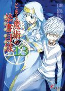 Novel13