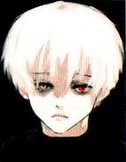 Perfil de Kaneki en el Volumen 14