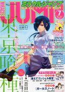 Miracle Jump 2014-07