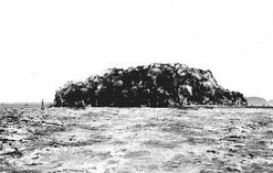 Rushima