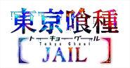 Logo jail