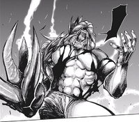 Yamori's halfkakuja form