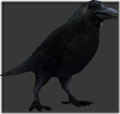 File:Crow thumb.png