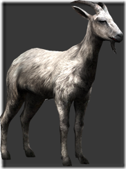 File:Goat thumb.png