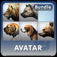 Avatarbundle