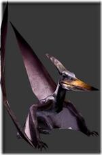 Pteranodon thumb