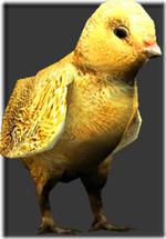 Chick thumb