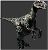 Deinonychus thumb