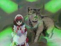 632px-Zoey cat
