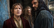 The-Hobbit-The-Desolation-of-Smaug-free05