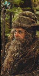Radagast Lo Hobbit (2012)