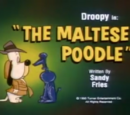 The Maltese Poodle
