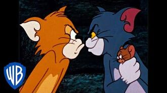 Tom & Jerry The Dog & Cat Switcharoo Classic Cartoon Compilation WB Kids