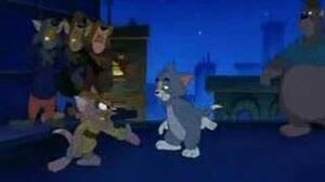 Tom and Jerry - What Do We Care