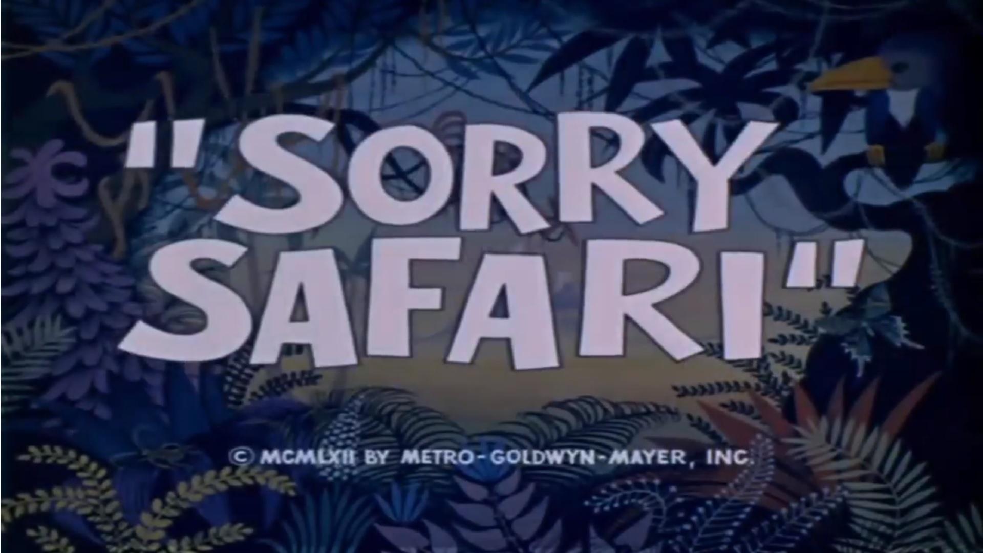 SorrySafari