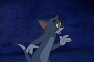 Tom and Jerry The Movie - Tom looking at the alley cats