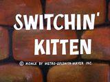 Switchin' Kitten