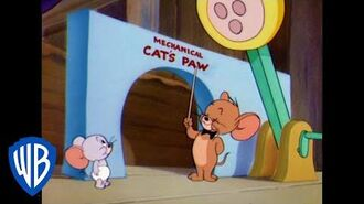 Tom & Jerry The Home Schooled Mouse Classic Cartoon WB Kids