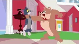 Fighting Over Food The Tom and Jerry Show Cartoon World